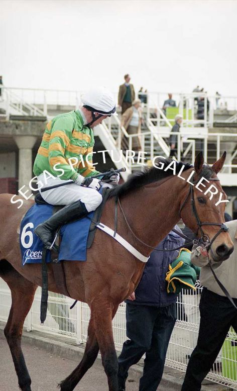 Racehorse Risk Accessor with Jockey, Timmy Murphy